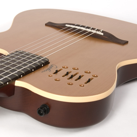 Godin Multiac Nylon Encore Natural SG ozvučena k...