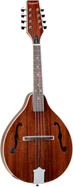 Tanglewood TWM T MH Union Natural Gloss mandolina